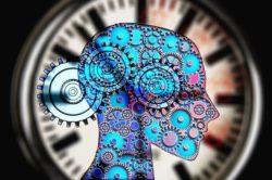 cinéma et neurosciences